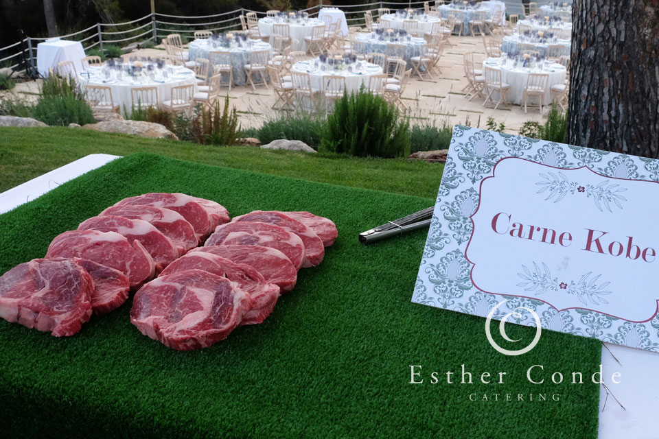 Bodas_Esther_Conde_Catering_de_lujo_06_5404web